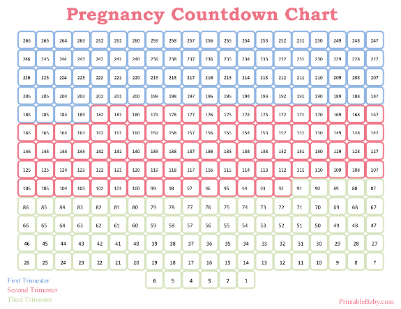 Weekly Calendar Counter : Printable pregnancy countdown